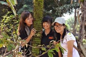 Một lần đi quay phóng sự tại vườn mai Đồng Nai