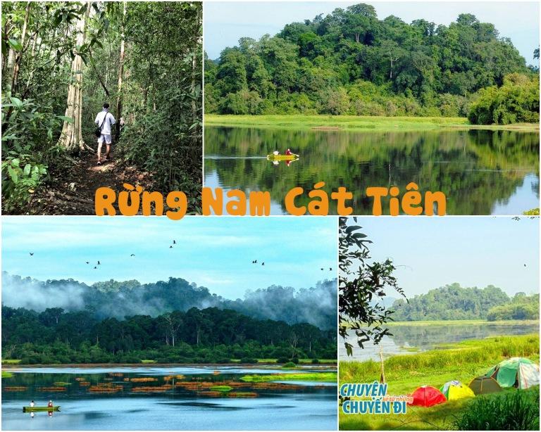 Rừng Nam Cát Tiên nơi ở ẩn gần Sài Gòn